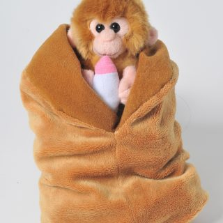 Baby Monkey With Blanket