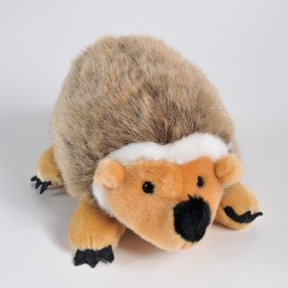 Hedgehog 10,5