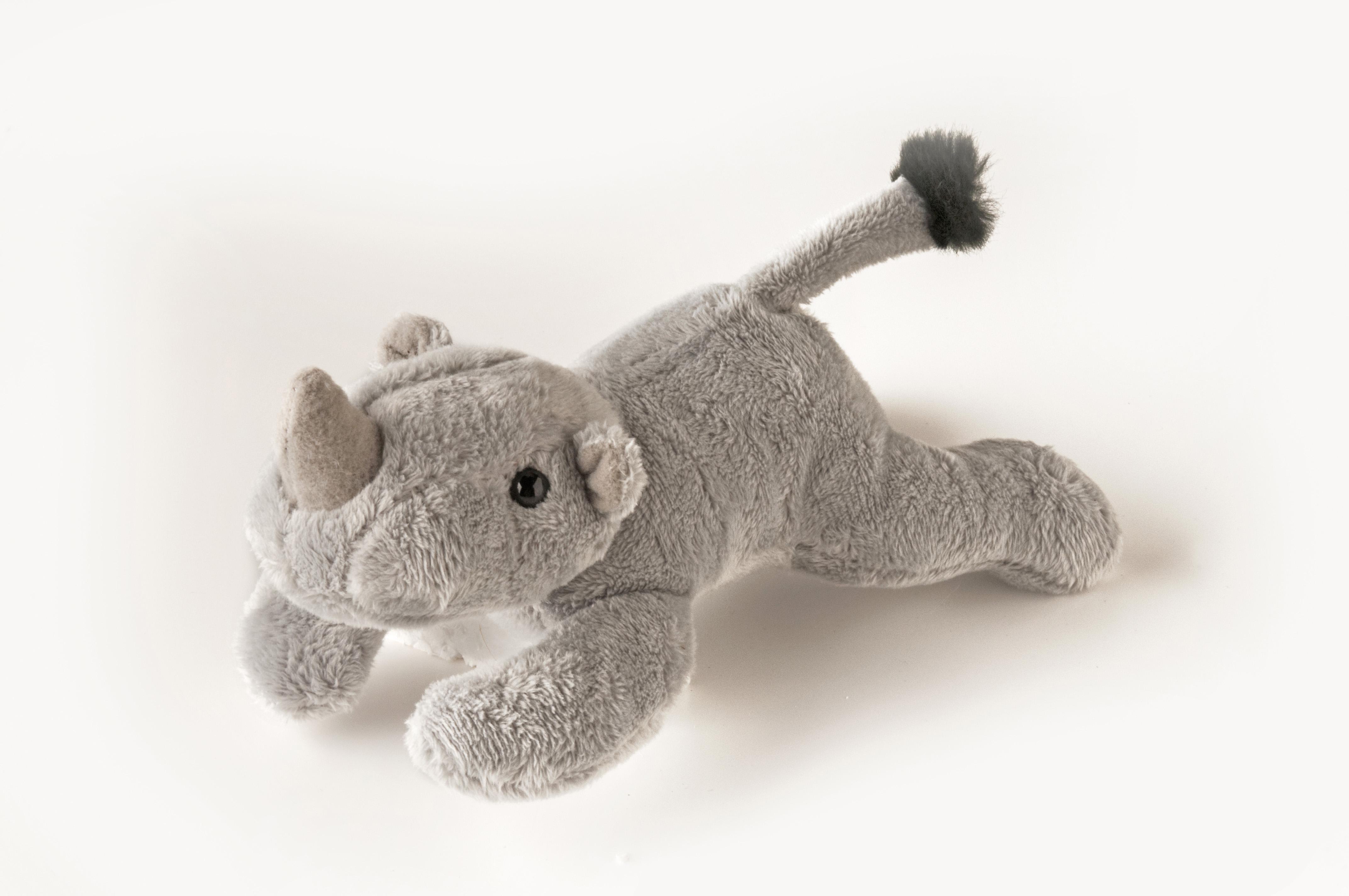 Rhino Mini 7,