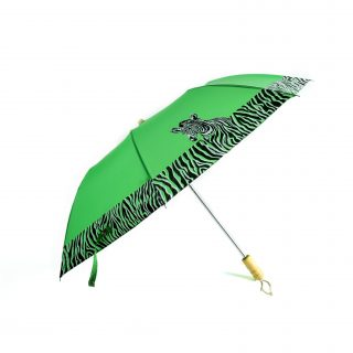 Zebra Compact Umbrella in Green